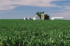 Landwirtschaftliche Gebäude Lizenzfreie Stockfotografie