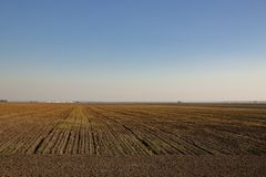 Landwirtschaftliche Herbstlandschaft Lizenzfreies Stockfoto