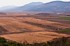 Landwirtschaftliche Landschaft. Lizenzfreie Stockfotos