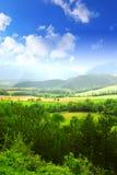 Landwirtschaftliche Landschaft stockfotografie