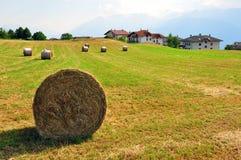 Landwirtschaftliche Landschaft Stockfotos