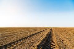 Landwirtschaftliche Landschaft, Ackerfruchtfeld Lizenzfreies Stockbild