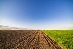 Landwirtschaftliche Landschaft, Ackerfruchtfeld Stockfotos