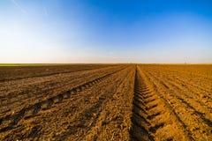 Landwirtschaftliche Landschaft, Ackerfruchtfeld Lizenzfreie Stockbilder
