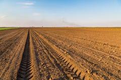 Landwirtschaftliche Landschaft, Ackerfruchtfeld Stockfotografie