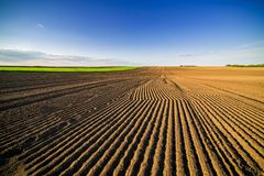 Landwirtschaftliche Landschaft, Ackerfruchtfeld Lizenzfreie Stockfotos