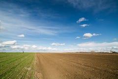 Landwirtschaftliche Landschaft, Ackerfruchtfeld Lizenzfreie Stockfotografie