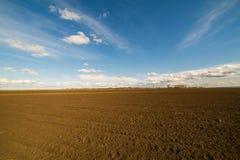 Landwirtschaftliche Landschaft, Ackerfruchtfeld Stockfoto