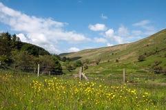 Landwirtschaftliche Landschaft in den Brecon-Leuchtfeuern von Wales Stockfoto