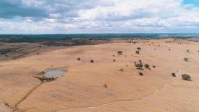 Landwirtschaftliche Landschaft der Luftaufnahme stock footage