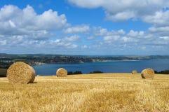 Landwirtschaftliche Landschaft der Sommerzeit Lizenzfreie Stockbilder