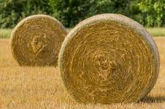 Landwirtschaftliche Landschaft der Sommerzeit lizenzfreie stockfotos