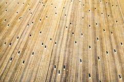 Landwirtschaftliche Landschaft der Sommerzeit Stockbilder