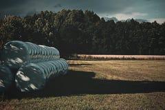 Landwirtschaftliche Landschaft der Sommerzeit Lizenzfreies Stockfoto