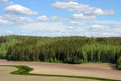 Landwirtschaftliche Landschaft des Feldes und des Waldes Lizenzfreie Stockfotos