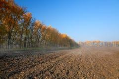 Landwirtschaftliche Landschaft des Herbstes mit gepflogenem Feld Stockfotografie