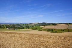 Landwirtschaftliche Landschaft des Patchworks Lizenzfreies Stockfoto