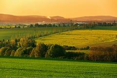 Landwirtschaftliche Landschaft des schönen Frühlinges Lizenzfreies Stockbild