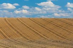 Landwirtschaftliche Landschaft des schönen Sommers Stockfotos