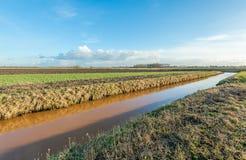 Landwirtschaftliche Landschaft diagonal halbiert durch einen Abzugsgraben Lizenzfreies Stockbild