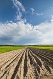 Landwirtschaftliche Landschaft, gepflogenes Feld Lizenzfreie Stockfotos