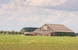 Landwirtschaftliche Landschaft im Frühjahr Lizenzfreies Stockbild