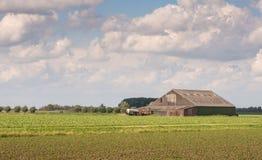 Landwirtschaftliche Landschaft im Frühjahr Stockfotografie