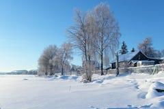 Landwirtschaftliche Landschaft im Winter lizenzfreies stockbild