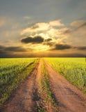 Landwirtschaftliche Landschaft mit einer Straße Stockfotografie
