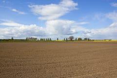 Landwirtschaftliche Landschaft mit gepflogenem Boden Lizenzfreie Stockbilder