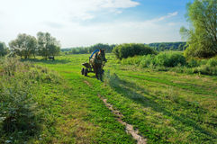 Landwirtschaftliche Landschaft mit Pferd Lizenzfreies Stockfoto