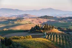 Landwirtschaftliche Landschaft mit Weinbergen und Gärten Lizenzfreies Stockfoto