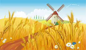 Landwirtschaftliche Landschaft mit Windmühle stock abbildung
