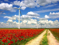 Landwirtschaftliche Landschaft mit Windturbinen auf Mohnblumen planen Stockbilder