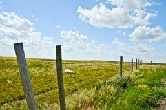 Landwirtschaftliche Landschaft mit Zaun entlang Ackerland Lizenzfreies Stockfoto