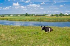Landwirtschaftliche Landschaft in Mittelukraine. lizenzfreies stockbild