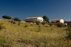 Landwirtschaftliche Landschaft in Provence, Frankreich Stockbilder