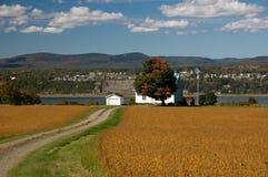 Landwirtschaftliche Landschaft in Quebec Stockbilder