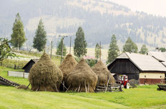 Landwirtschaftliche Landschaft in Rumänien Stockfotografie