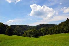 Landwirtschaftliche Landschaft am Sommer Stockfotografie