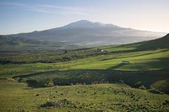 Landwirtschaftliche Landschaft und Vulkan Ätna stockfotos