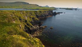 Landwirtschaftliche Landschaft vom Ring Kerry Irland Lizenzfreies Stockbild