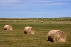 Landwirtschaftliche Landschaft von Kanada Lizenzfreie Stockfotos