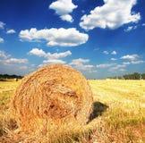 Landwirtschaftliche Landschaften Stockbild