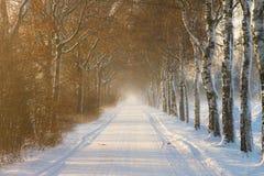 Landwirtschaftliche Landstraße im Winter Lizenzfreies Stockbild