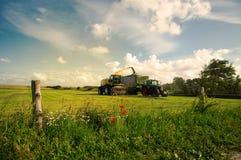 Landwirtschaftliche Lebensdauer Lizenzfreies Stockbild