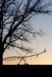 Landwirtschaftliche Maschinen der Bewässerung am Sonnenuntergang Stockfotos