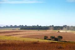 Landwirtschaftliche Maschinerie, die Sojabohnen erntet Stockbilder