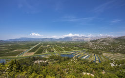Landwirtschaftliche Obstgärten und Felder im Flussdelta neretva Croa Stockbild