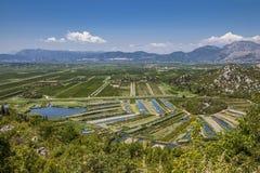 Landwirtschaftliche Obstgärten und Felder im Flussdelta neretva Croa Lizenzfreie Stockfotografie